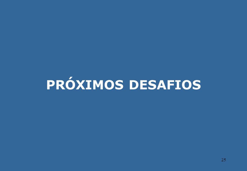 25 PRÓXIMOS DESAFIOS
