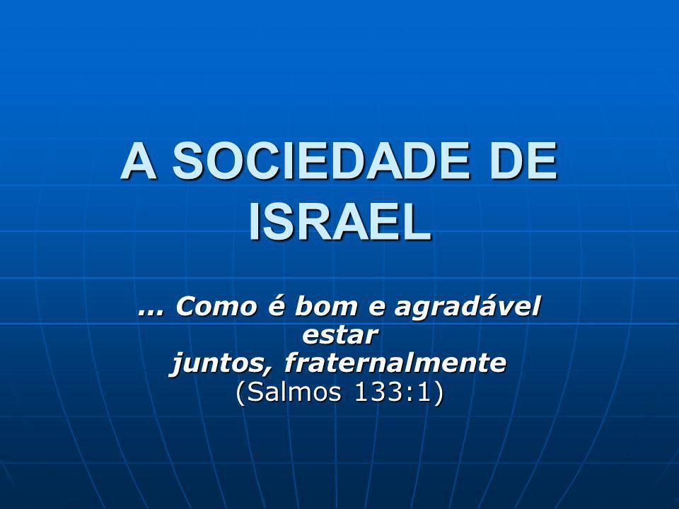 A SOCIEDADE DE ISRAEL... Como é bom e agradável estar juntos, fraternalmente (Salmos 133:1)