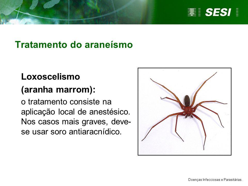 Tratamento do araneísmo Loxoscelismo (aranha marrom): o tratamento consiste na aplicação local de anestésico. Nos casos mais graves, deve- se usar sor