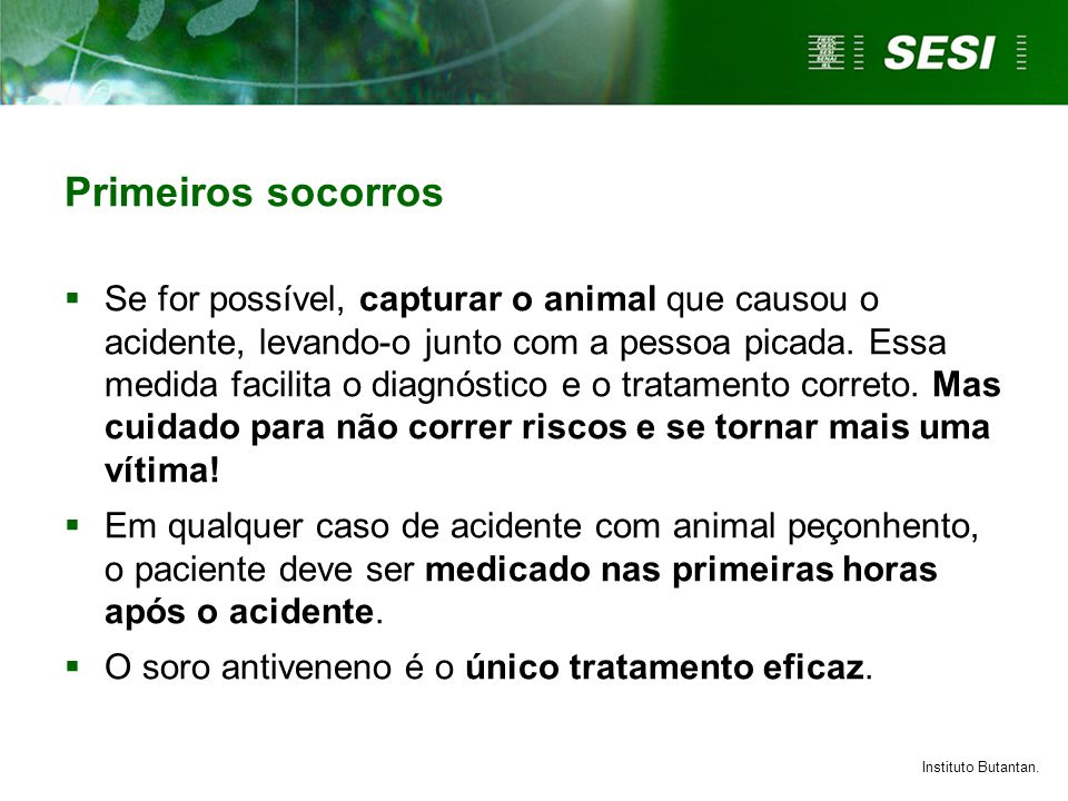 Primeiros socorros  Se for possível, capturar o animal que causou o acidente, levando-o junto com a pessoa picada. Essa medida facilita o diagnóstico