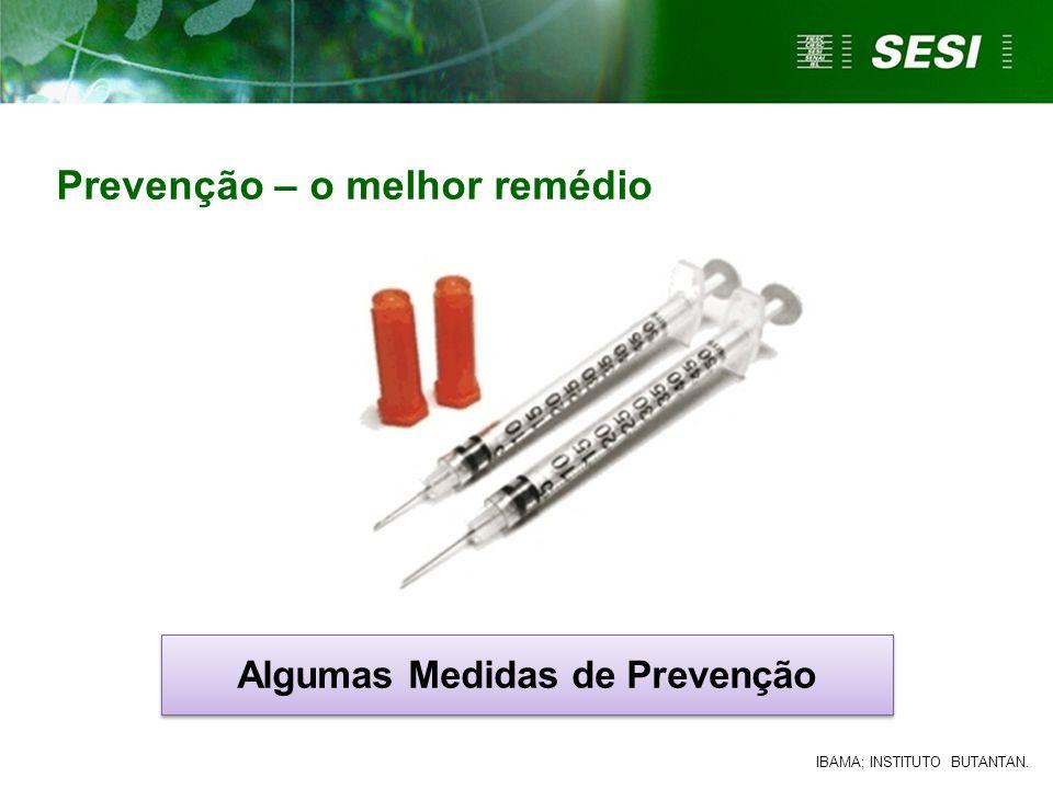 Prevenção – o melhor remédio Algumas Medidas de Prevenção IBAMA; INSTITUTO BUTANTAN.
