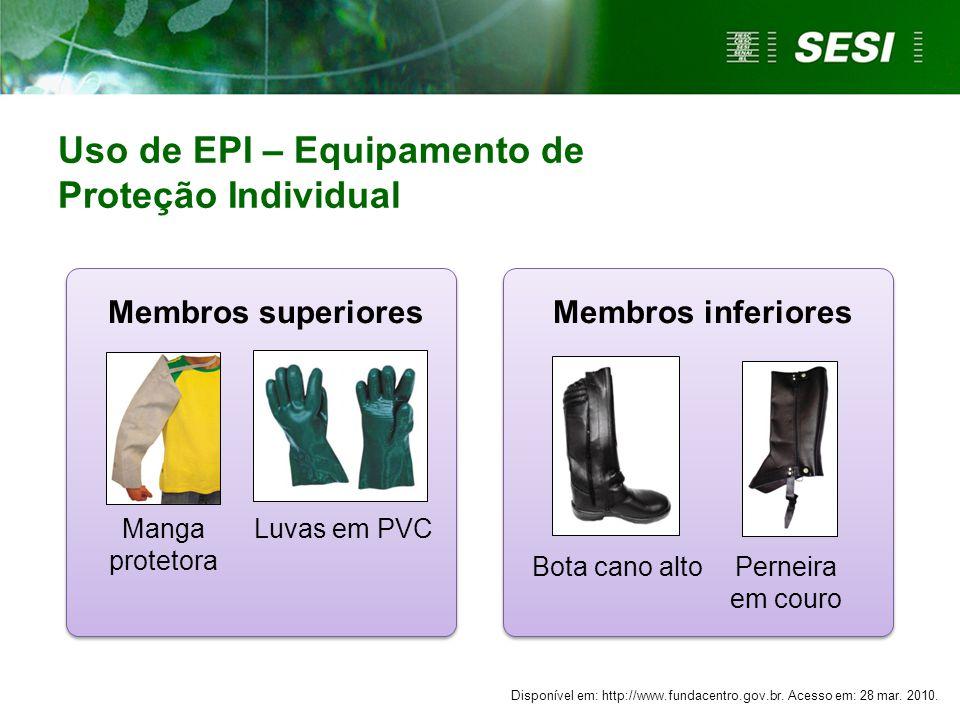 Membros superiores Membros inferiores Manga protetora Luvas em PVC Bota cano altoPerneira em couro Uso de EPI – Equipamento de Proteção Individual Dis
