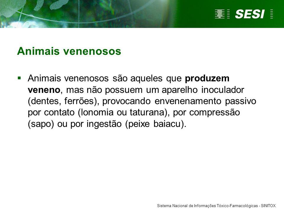 Animais venenosos  Animais venenosos são aqueles que produzem veneno, mas não possuem um aparelho inoculador (dentes, ferrões), provocando envenename