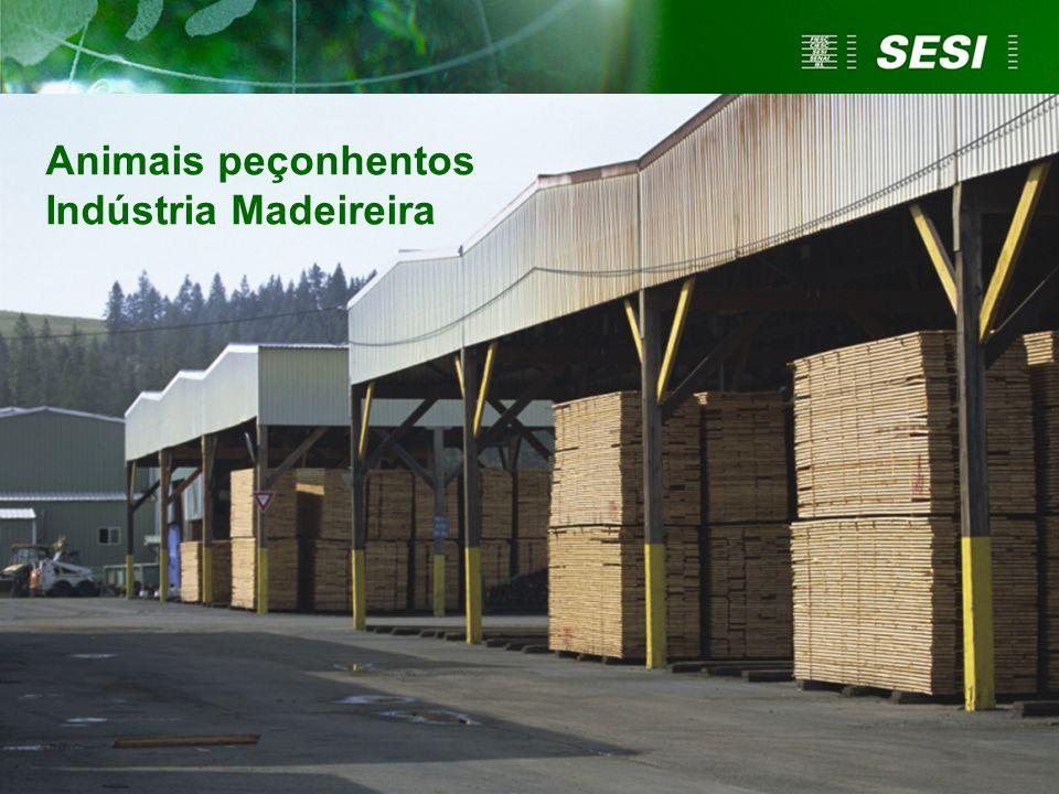 Animais peçonhentos Indústria Madeireira