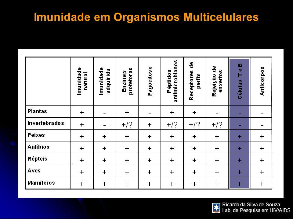 Ricardo da Silva de Souza Lab. de Pesquisa em HIV/AIDS Imunidade em Organismos Multicelulares