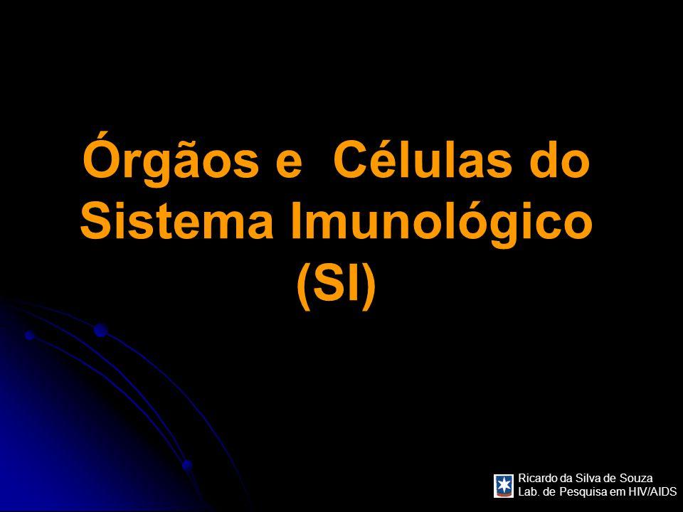 Ricardo da Silva de Souza Lab. de Pesquisa em HIV/AIDS Órgãos e Células do Sistema Imunológico (SI)