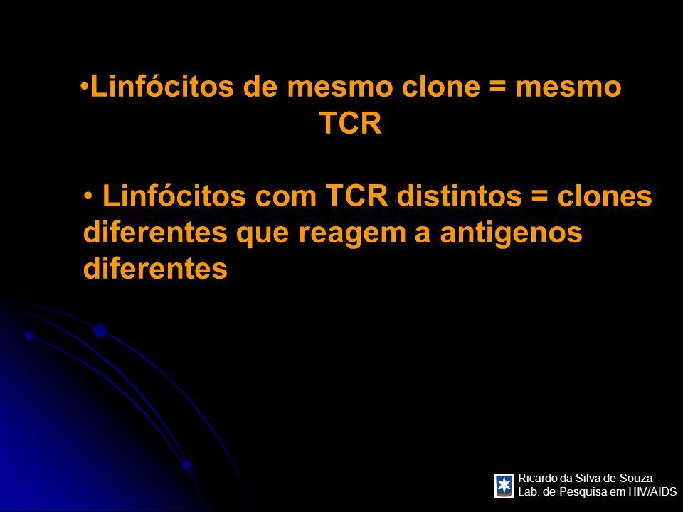 Ricardo da Silva de Souza Lab. de Pesquisa em HIV/AIDS Linfócitos de mesmo clone = mesmo TCR Linfócitos com TCR distintos = clones diferentes que reag