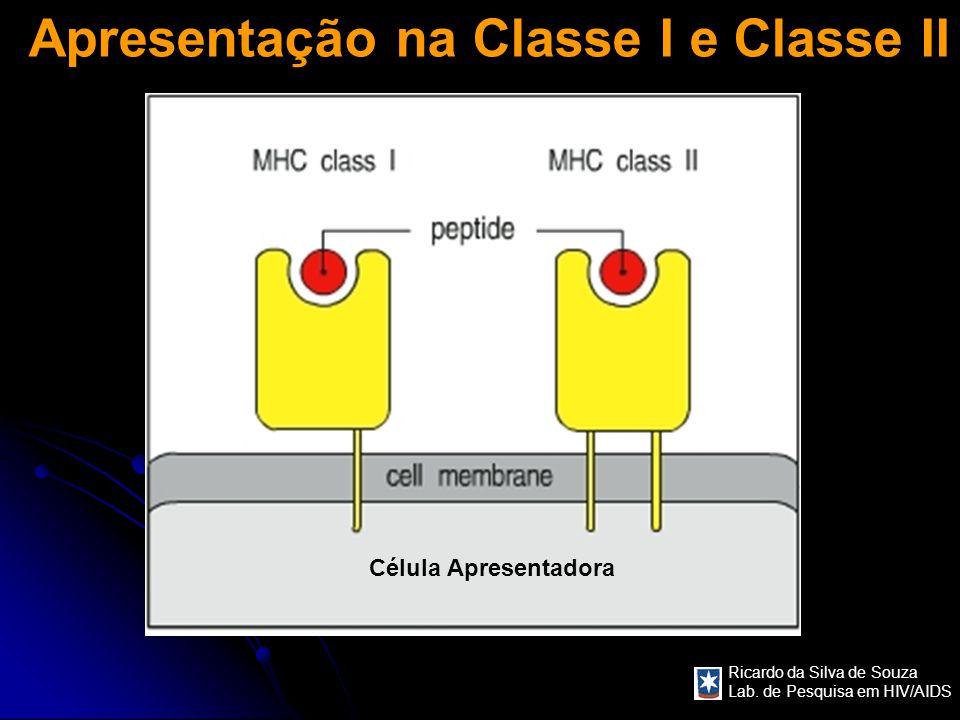 Ricardo da Silva de Souza Lab. de Pesquisa em HIV/AIDS Apresentação na Classe I e Classe II Célula Apresentadora