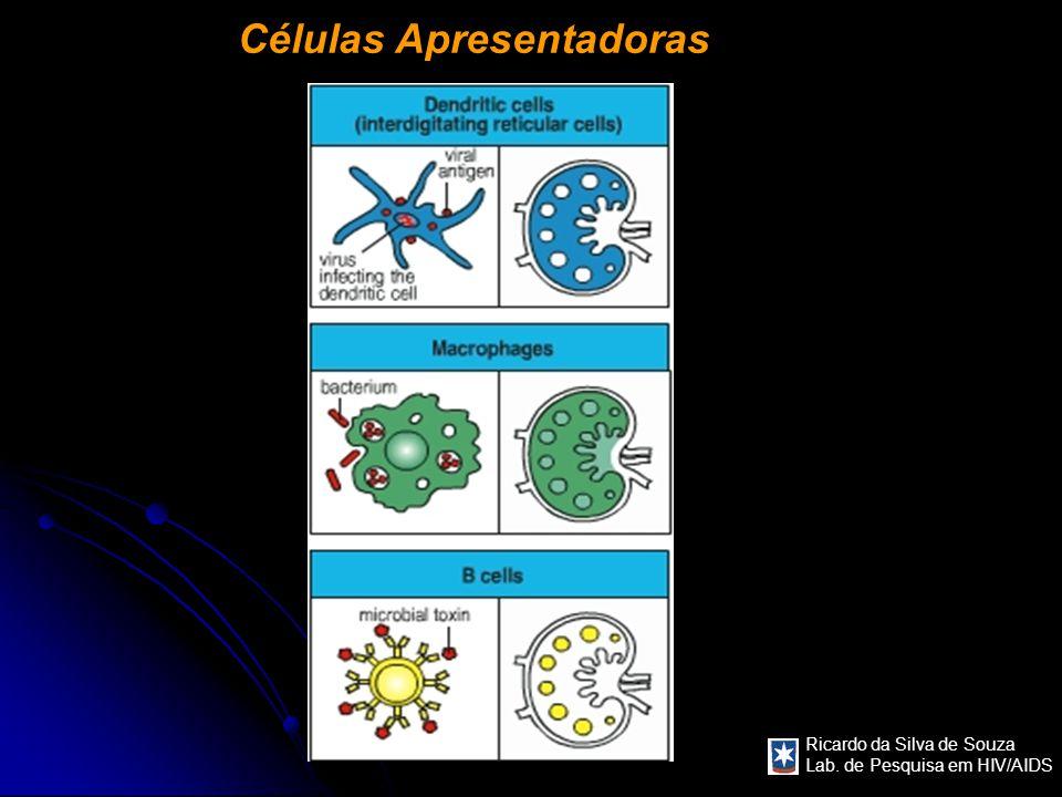 Ricardo da Silva de Souza Lab. de Pesquisa em HIV/AIDS Células Apresentadoras