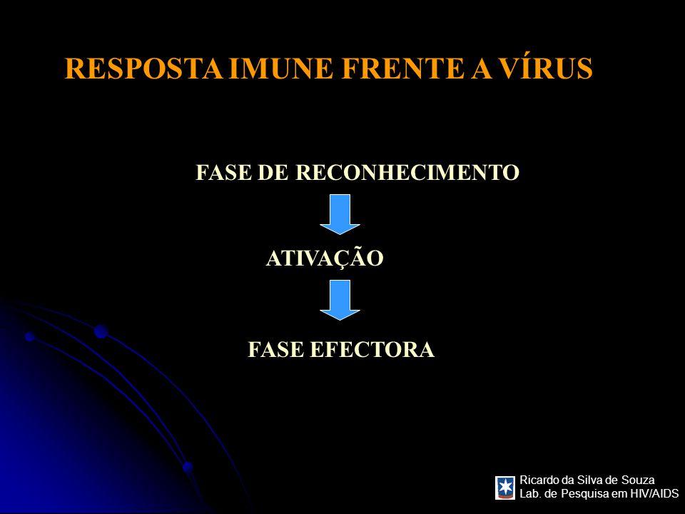 Ricardo da Silva de Souza Lab. de Pesquisa em HIV/AIDS RESPOSTA IMUNE FRENTE A VÍRUS FASE DE RECONHECIMENTO ATIVAÇÃO FASE EFECTORA