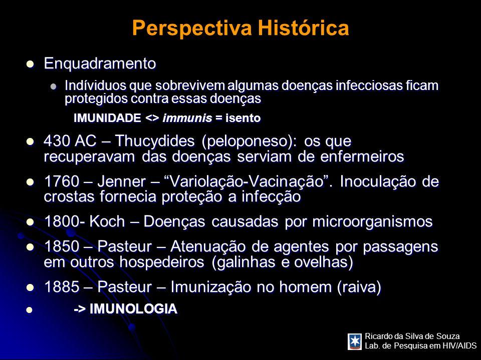 Ricardo da Silva de Souza Lab. de Pesquisa em HIV/AIDS Perspectiva Histórica Enquadramento Enquadramento Indíviduos que sobrevivem algumas doenças inf