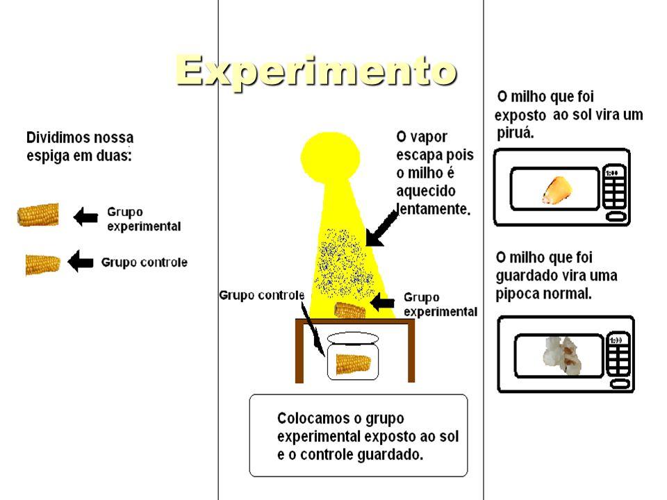 Conclusão Conclusão Exposto ao sol, o milho é aquecido vagarosamente, então o vapor escapa pelos poros sem haver grande pressão, logo o amido não explode para formar a pipoca, isso prova que existe água dentro do grão e ela é a responsável pela explosão.