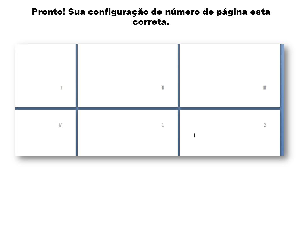 Pronto! Sua configuração de número de página esta correta.