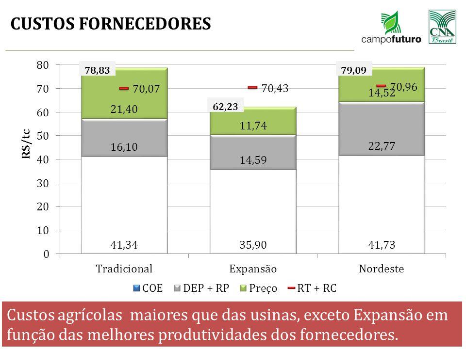 CUSTOS FORNECEDORES * COE + DEP + RP = COT * COT + RT + RC = CT * DEP = Depreciações * RP = Remuneração do proprietário * RT = Remuneração da terra *