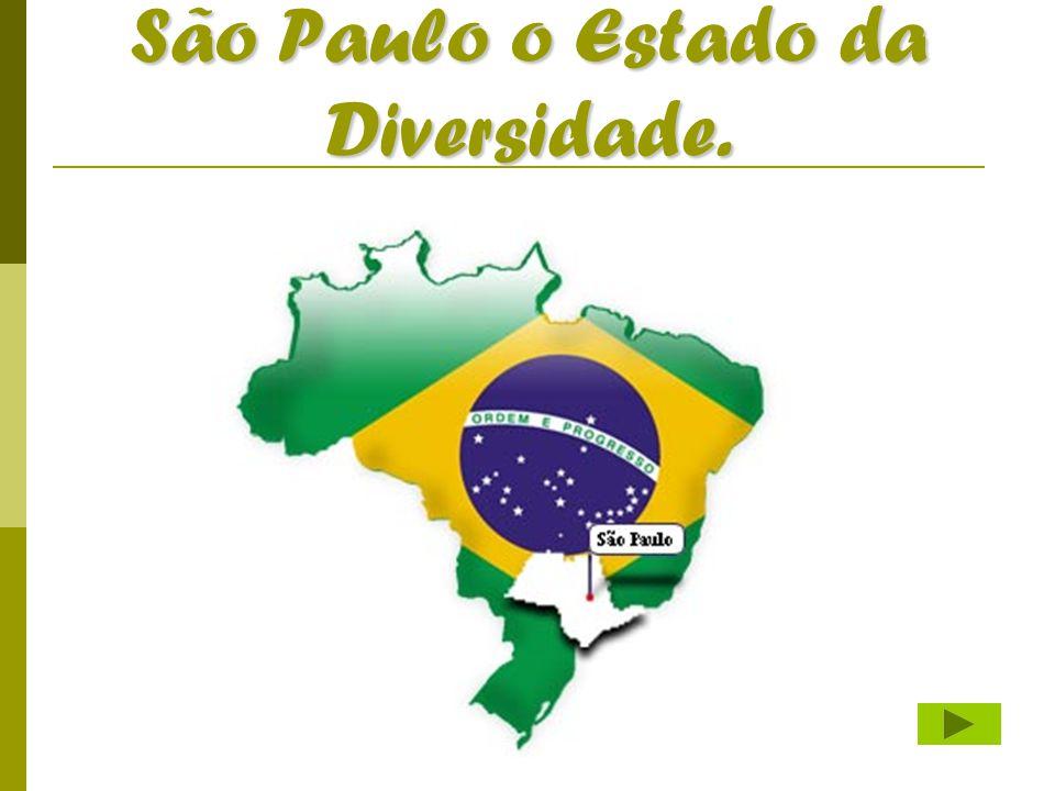 Uma Potência Chamada São Paulo  Falar do Estado de São Paulo é sempre no superlativo.