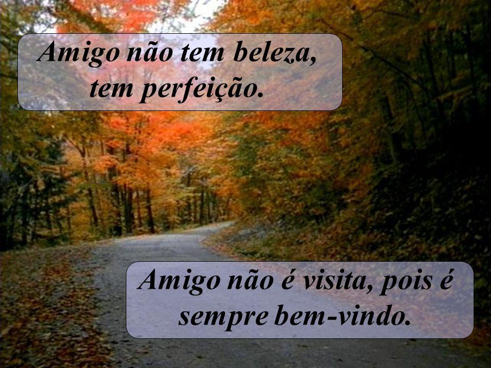 Amigo não tem beleza, tem perfeição. Amigo não é visita, pois é sempre bem-vindo.