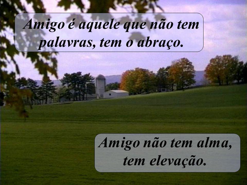 Amigo é aquele que não tem palavras, tem o abraço. Amigo não tem alma, tem elevação.