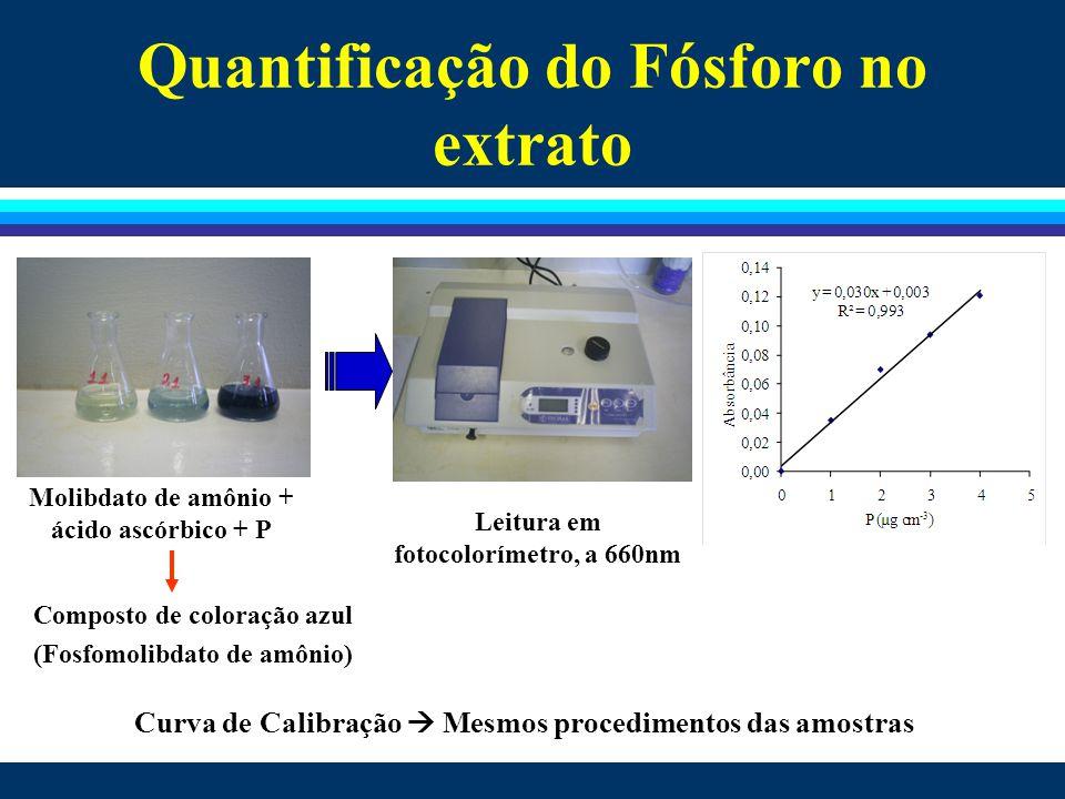 Quantificação do Fósforo no extrato Molibdato de amônio + ácido ascórbico + P Leitura em fotocolorímetro, a 660nm Curva de Calibração  Mesmos procedi