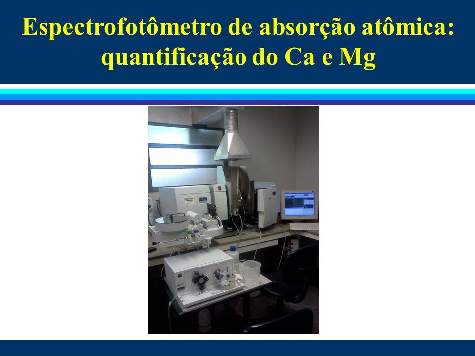 Espectrofotômetro de absorção atômica: quantificação do Ca e Mg