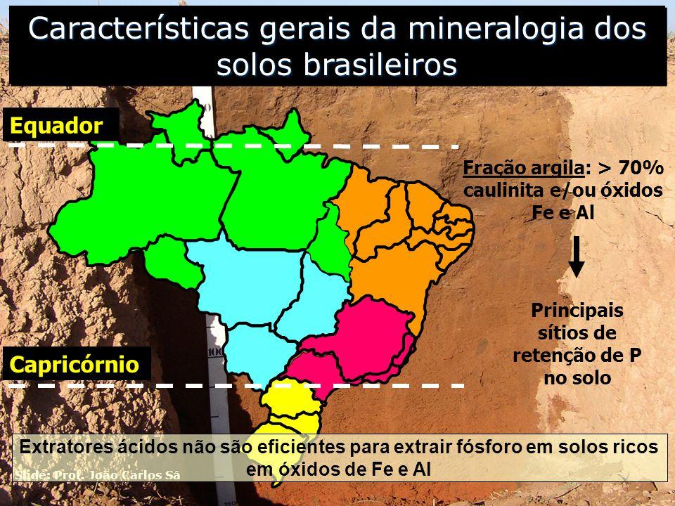 5 Principais sítios de retenção de P no solo Fração argila: > 70% caulinita e/ou óxidos Fe e Al Características gerais da mineralogia dos solos brasil