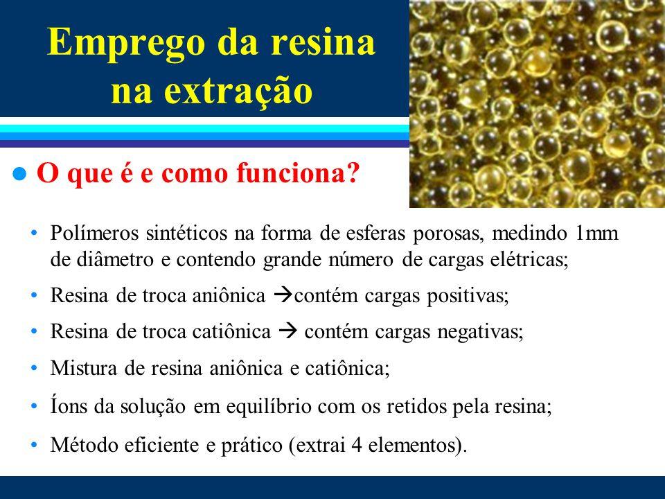 Como a planta absorve o fósforo A resina imita o mecanismo de extração pela planta Resina de troca iônica – em SP a partir de 1983 l Mecanismo de extração com resina