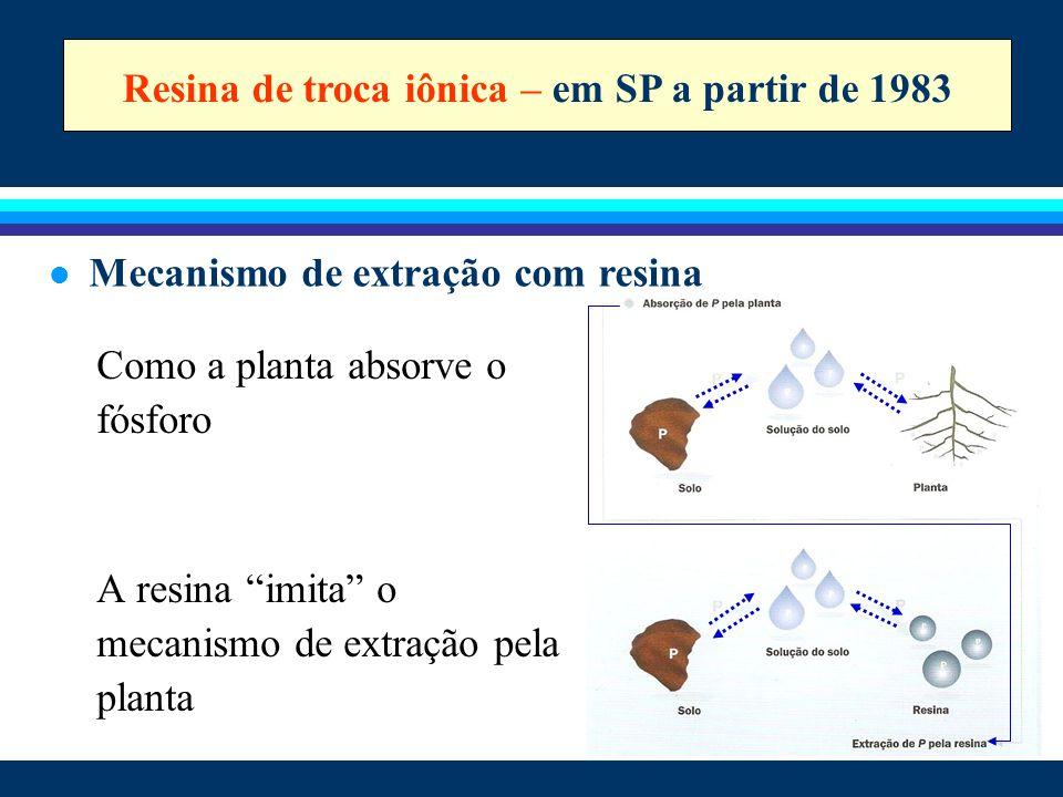 """Como a planta absorve o fósforo A resina """"imita"""" o mecanismo de extração pela planta Resina de troca iônica – em SP a partir de 1983 l Mecanismo de ex"""