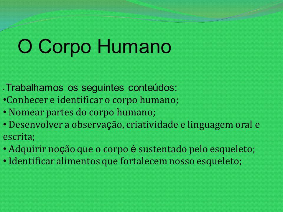 O Corpo Humano Trabalhamos os seguintes conteúdos: Conhecer e identificar o corpo humano; Nomear partes do corpo humano; Desenvolver a observa ç ão, c