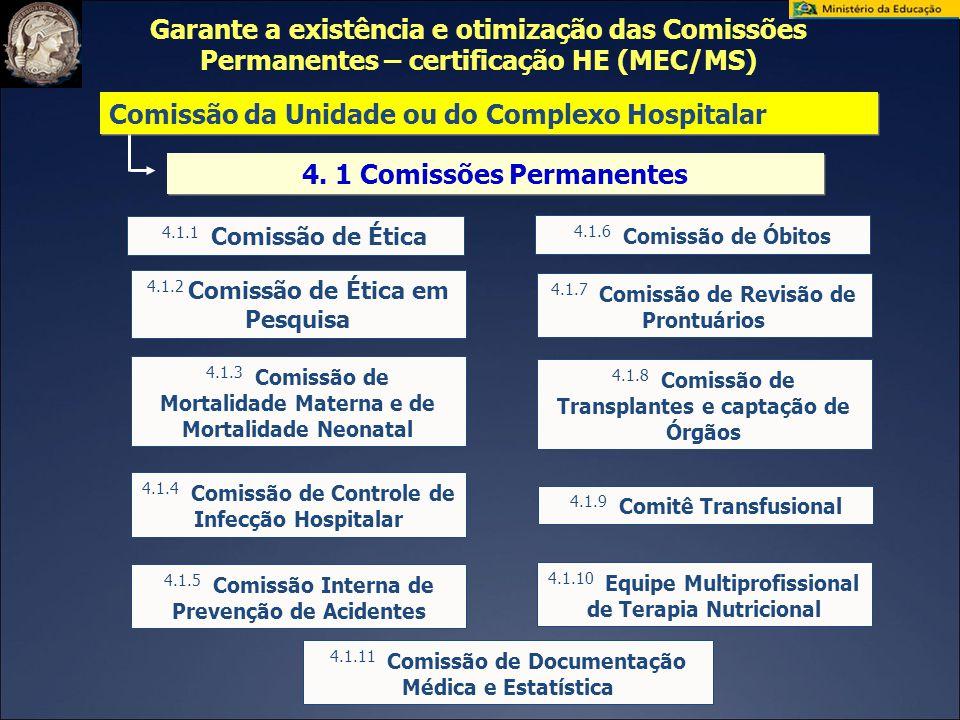 4. 1 Comissões Permanentes 4.1.1 Comissão de Ética 4.1.2 Comissão de Ética em Pesquisa 4.1.3 Comissão de Mortalidade Materna e de Mortalidade Neonatal