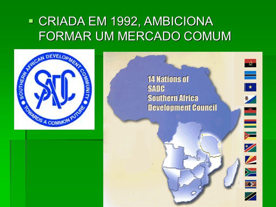  CRIADA EM 1992, AMBICIONA FORMAR UM MERCADO COMUM