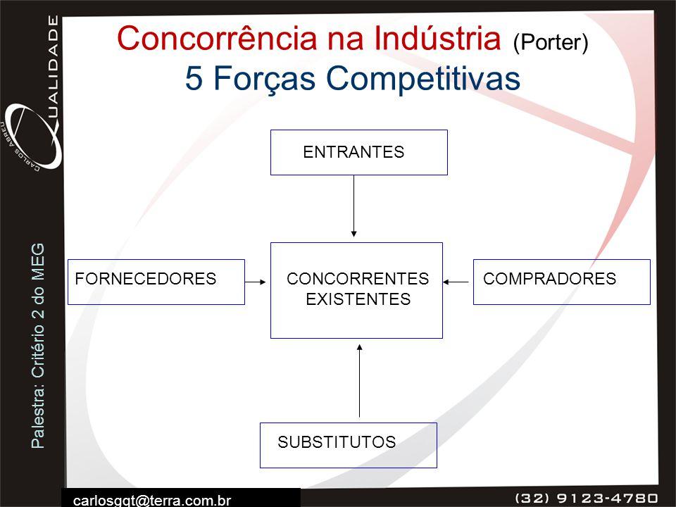 Palestra: Critério 2 do MEG carlosgqt@terra.com.br Concorrência na Indústria (Porter) 5 Forças Competitivas SUBSTITUTOS COMPRADORESFORNECEDORES ENTRAN