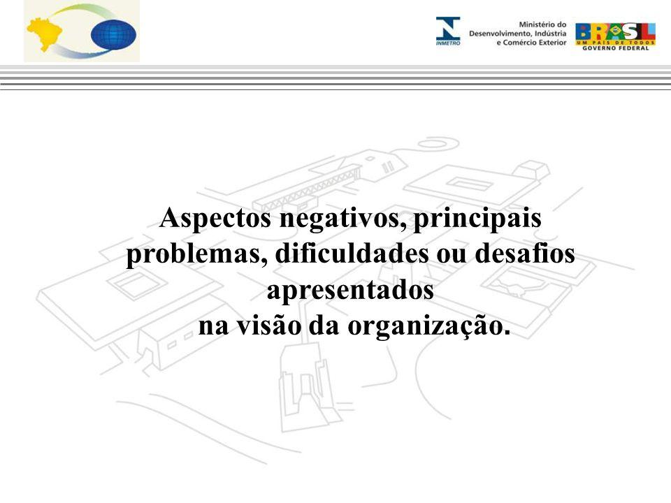 Aspectos negativos, principais problemas, dificuldades ou desafios apresentados na visão da organização.