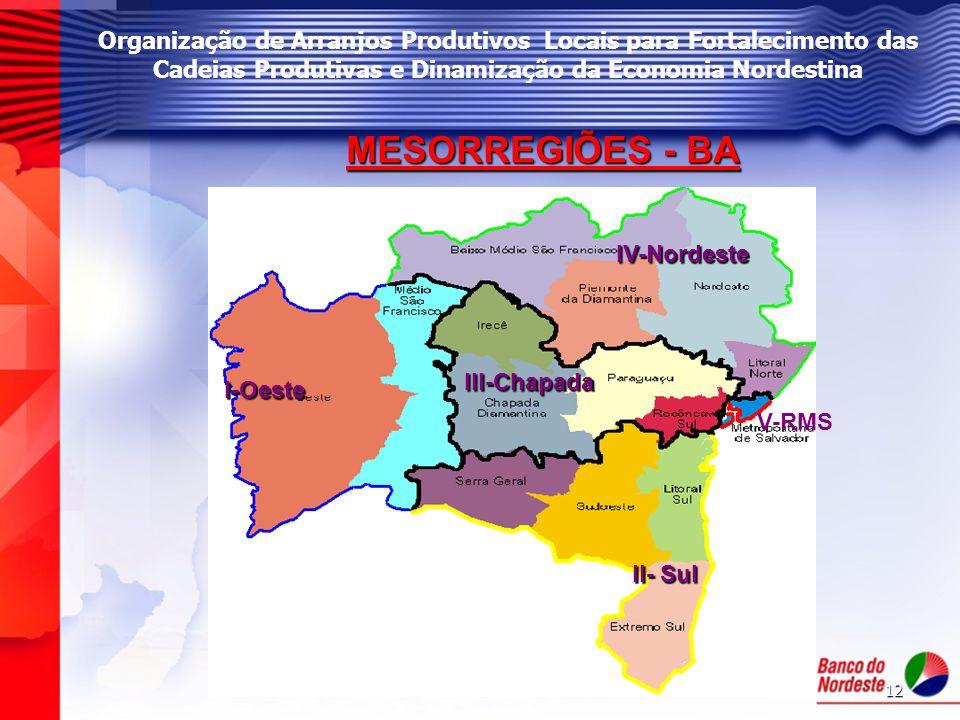 12 Organização de Arranjos Produtivos Locais para Fortalecimento das Cadeias Produtivas e Dinamização da Economia Nordestina MESORREGIÕES - BA I-Oeste