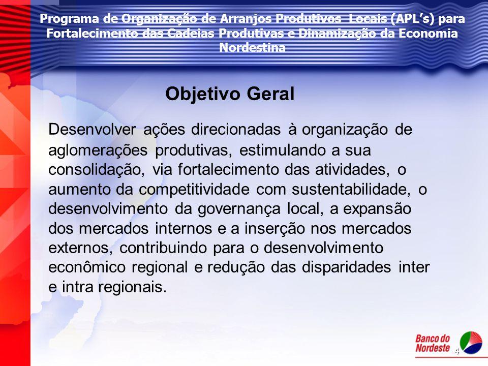 4 Programa de Organização de Arranjos Produtivos Locais (APL's) para Fortalecimento das Cadeias Produtivas e Dinamização da Economia Nordestina Objeti