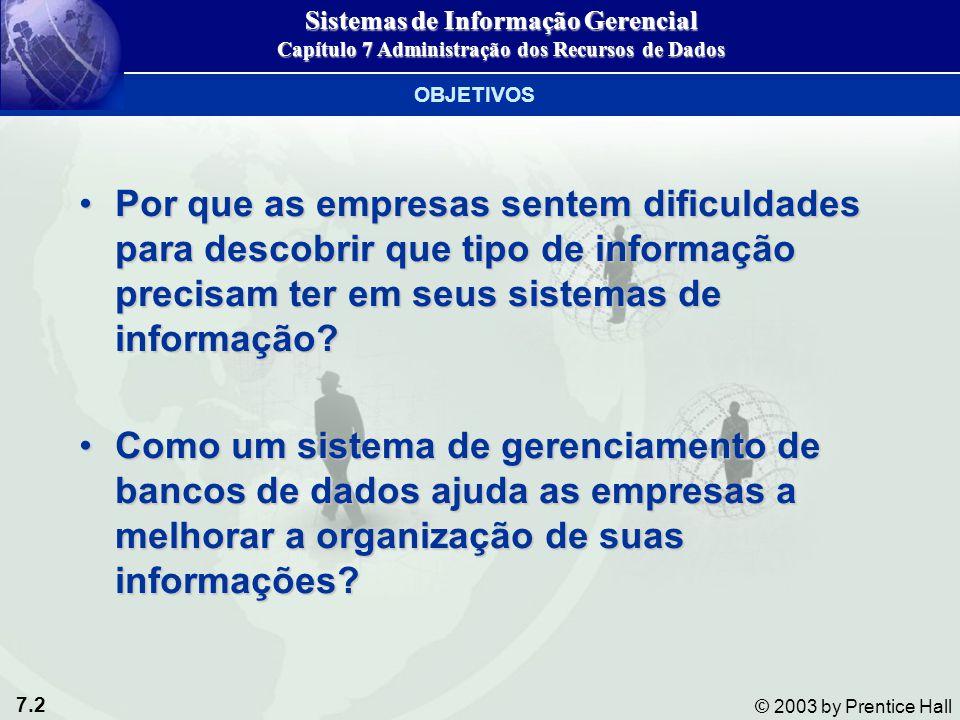 7.2 © 2003 by Prentice Hall Por que as empresas sentem dificuldades para descobrir que tipo de informação precisam ter em seus sistemas de informação?