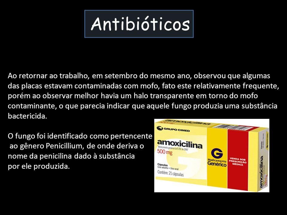 Antibióticos Ao retornar ao trabalho, em setembro do mesmo ano, observou que algumas das placas estavam contaminadas com mofo, fato este relativamente