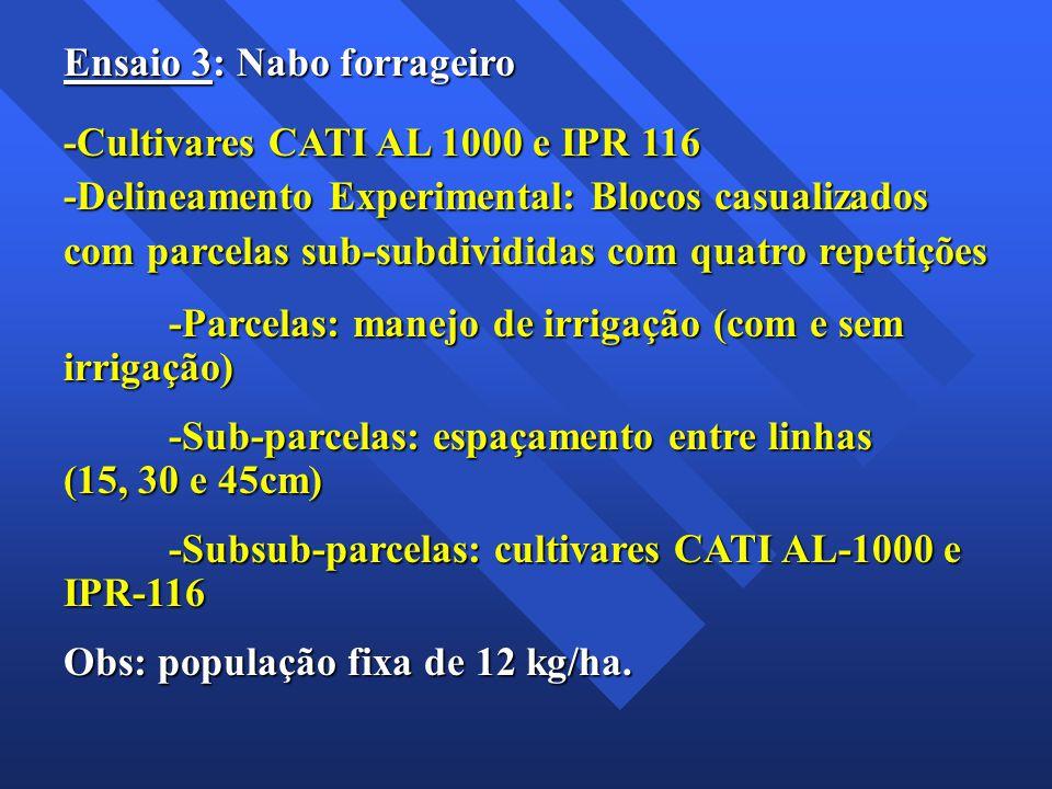 Ensaio 3: Nabo forrageiro -Cultivares CATI AL 1000 e IPR 116 -Delineamento Experimental: Blocos casualizados com parcelas sub-subdivididas com quatro