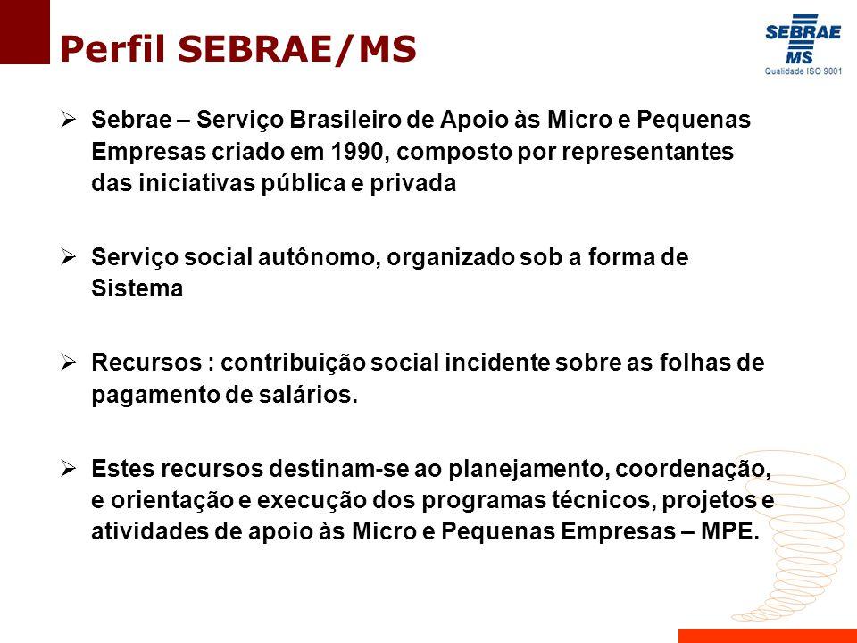 Perfil SEBRAE/MS  Sebrae – Serviço Brasileiro de Apoio às Micro e Pequenas Empresas criado em 1990, composto por representantes das iniciativas pública e privada  Serviço social autônomo, organizado sob a forma de Sistema  Recursos : contribuição social incidente sobre as folhas de pagamento de salários.