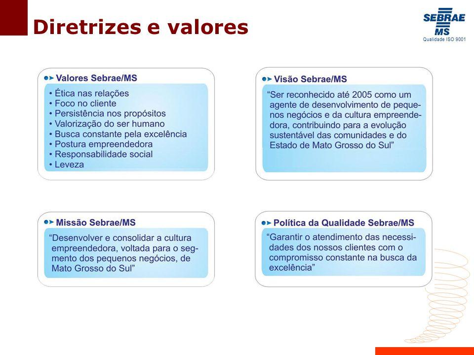 Diretrizes e valores