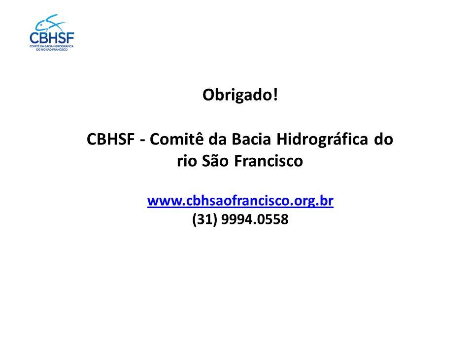 Obrigado! CBHSF - Comitê da Bacia Hidrográfica do rio São Francisco www.cbhsaofrancisco.org.br (31) 9994.0558