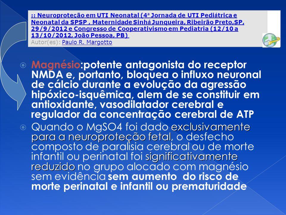  Magnésio:potente antagonista do receptor NMDA e, portanto, bloquea o influxo neuronal de cálcio durante a evolução da agressão hipóxico-isquêmica, a