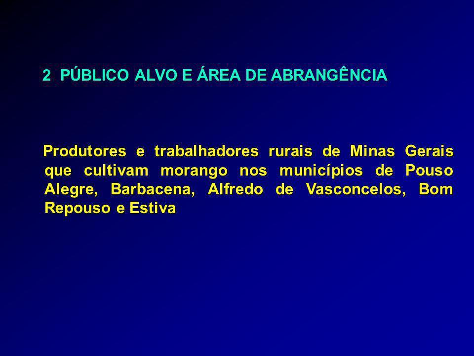 2 PÚBLICO ALVO E ÁREA DE ABRANGÊNCIA 2 PÚBLICO ALVO E ÁREA DE ABRANGÊNCIA Produtores e trabalhadores rurais de Minas Gerais que cultivam morango nos m