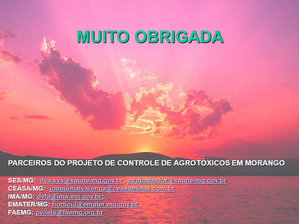 MUITO OBRIGADA PARCEIROS DO PROJETO DE CONTROLE DE AGROTÓXICOS EM MORANGO SES/MG: dva.svs@saude.mg.gov.br; strabalhador@saude.mg.gov.br dva.svs@saude.