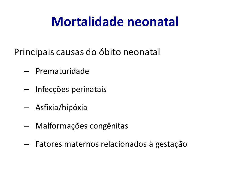 Mortalidade neonatal Principais causas do óbito neonatal – Prematuridade – Infecções perinatais – Asfixia/hipóxia – Malformações congênitas – Fatores