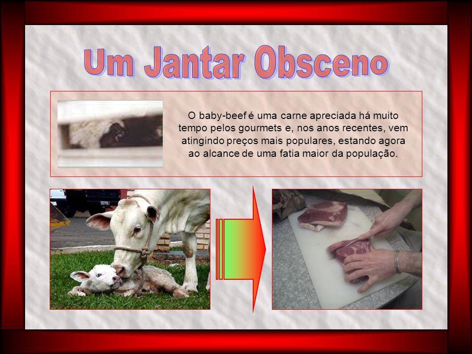 Rildo Silveira Os que comem carne rejeitam pensar sua origem, sequer se sentem mal com a matança de animais.