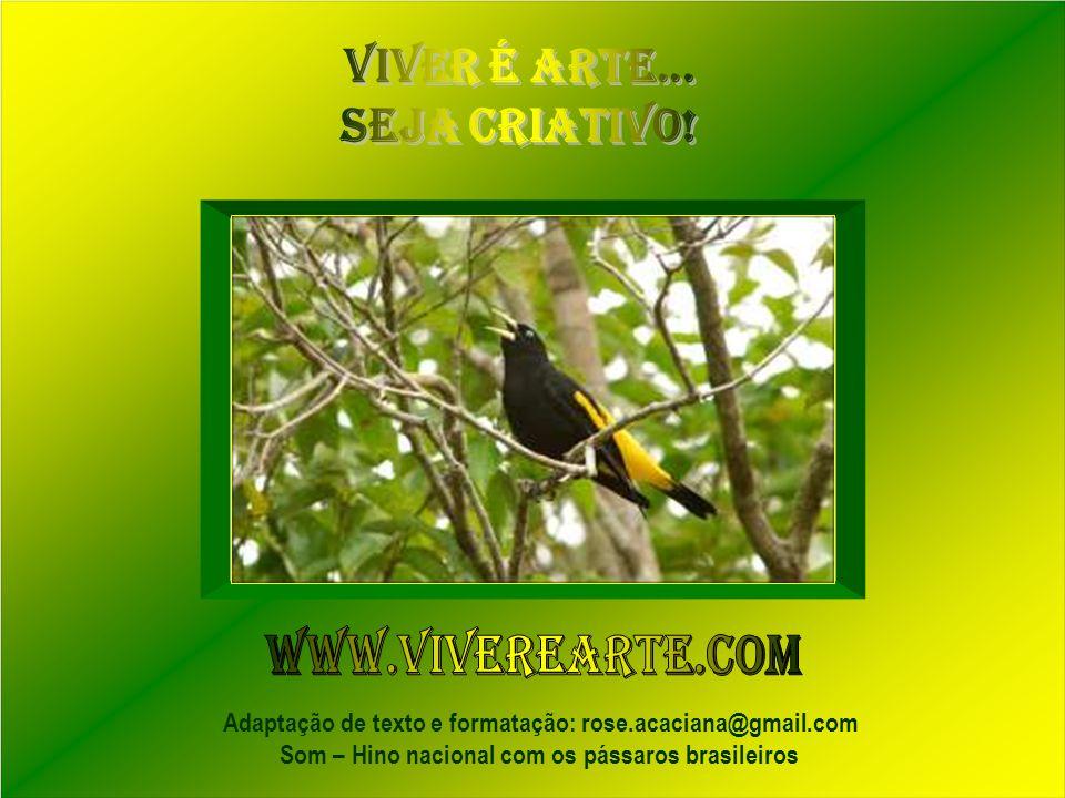 Conheça o PROJETO VERONESE Contato: jbn@ufpa.br www.cultura.ufpa.br/matemática Fotos: Octavio Campos Salles