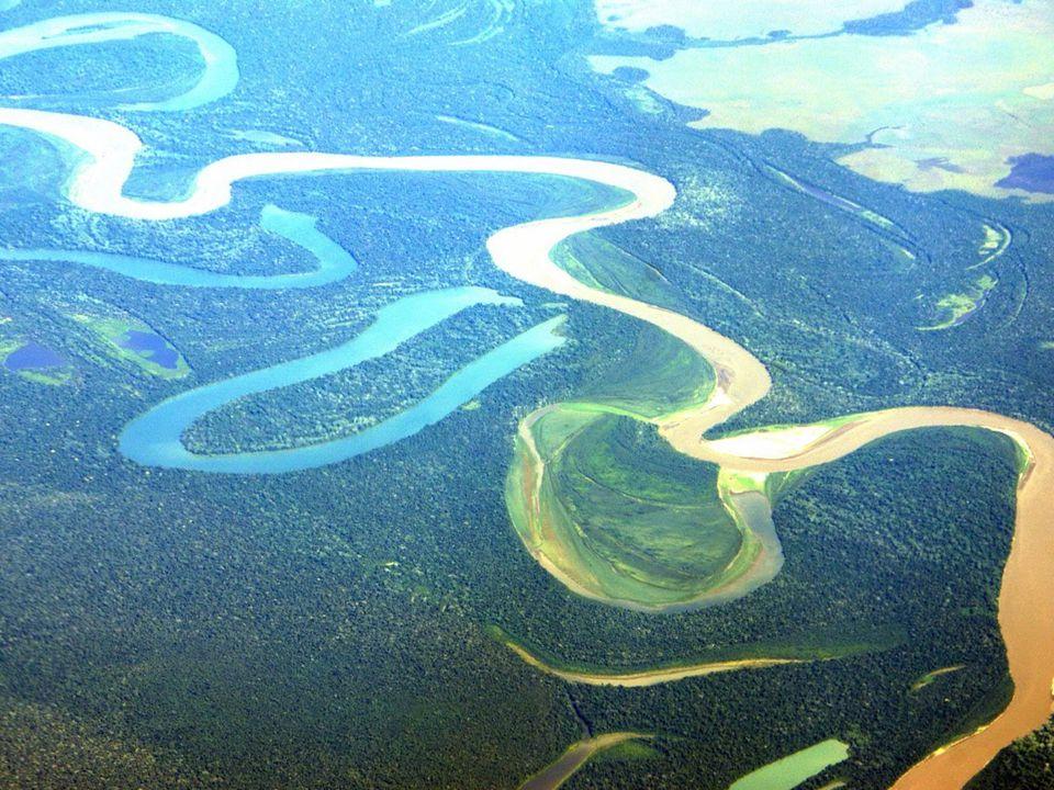 Meandros do rio amazonas