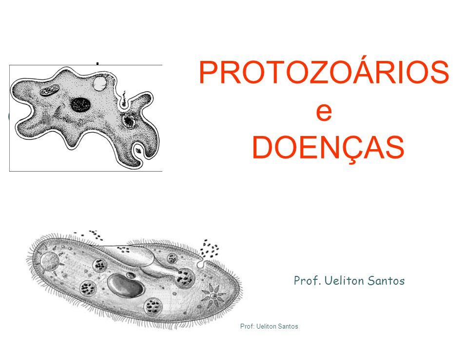 PROTOZOÁRIOS e DOENÇAS Prof. Ueliton Santos Prof: Ueliton Santos