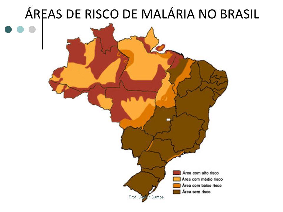 ÁREAS DE RISCO DE MALÁRIA NO BRASIL Prof: Ueliton Santos
