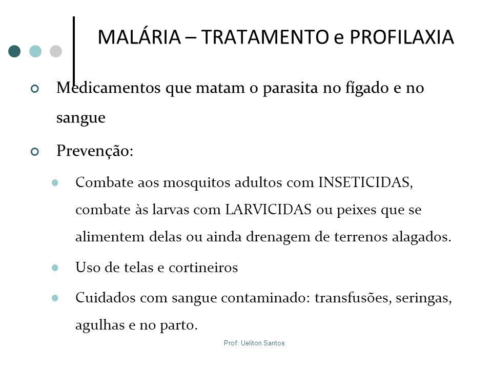 MALÁRIA – TRATAMENTO e PROFILAXIA Medicamentos que matam o parasita no fígado e no sangue Prevenção: Combate aos mosquitos adultos com INSETICIDAS, co