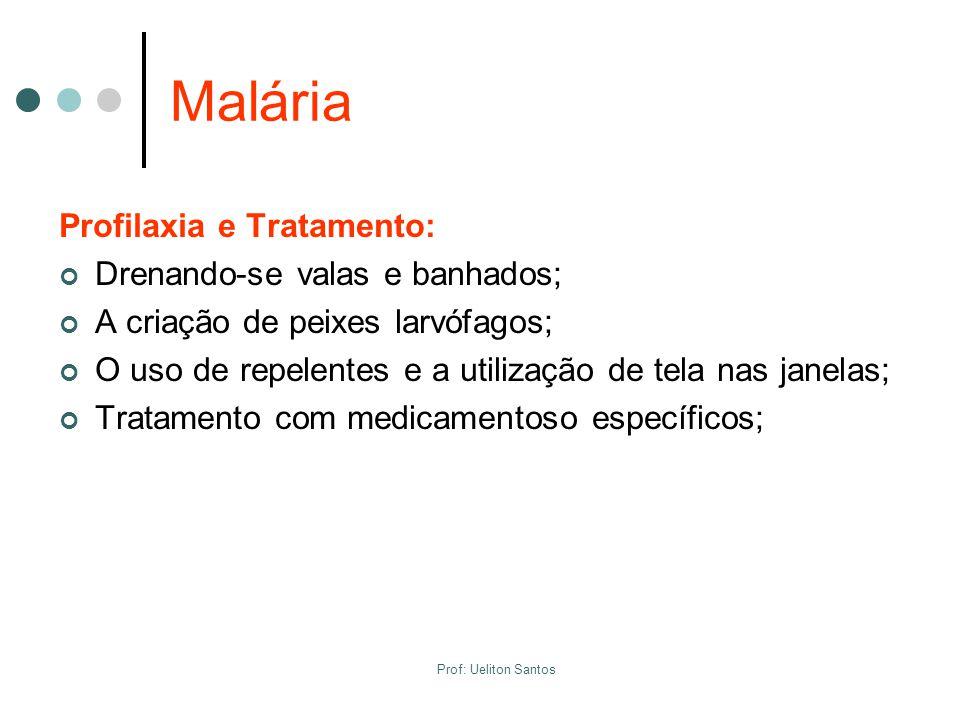 Malária Profilaxia e Tratamento: Drenando-se valas e banhados; A criação de peixes larvófagos; O uso de repelentes e a utilização de tela nas janelas;